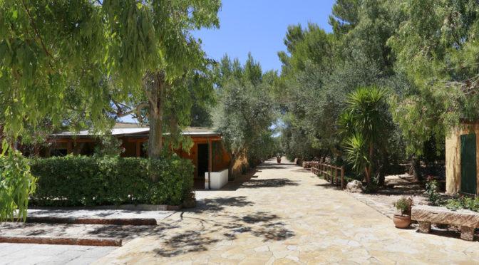 Il Villaggetto – Bed and Breakfast a Neviano di Lecce – Turismo Rurale nel Salento – Viale esterno con casa